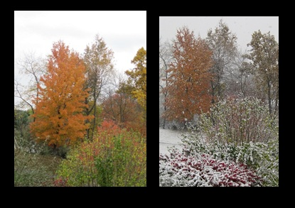 Before and during October snow