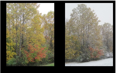 October snow, before and after photos